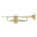 Courtois 333L Trumpet in lacquer (large bore)