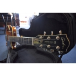 Godin Montreal Premier Supreme with Tric Case