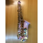 Elkhart Alto Saxophone in Pink
